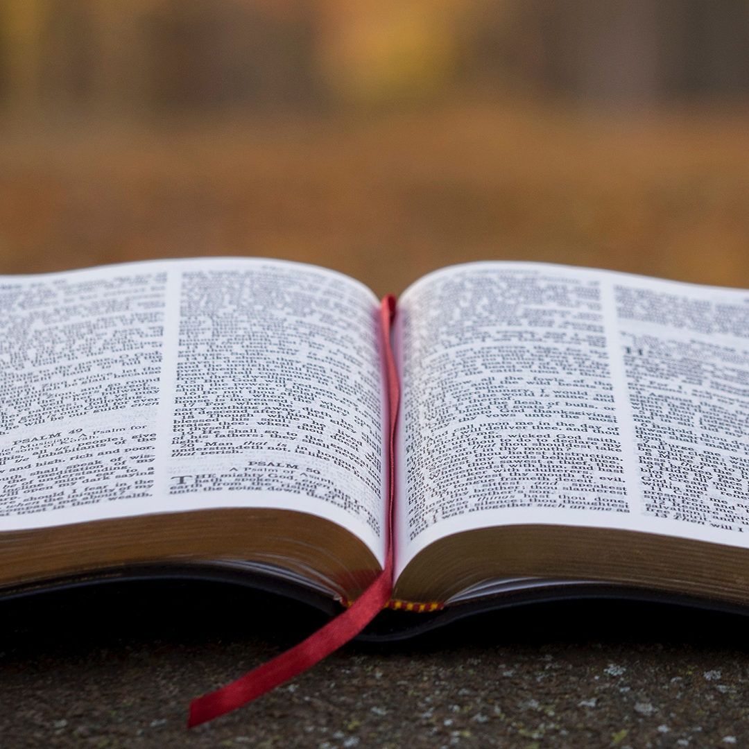 bible-page-on-gray-concrete-surface
